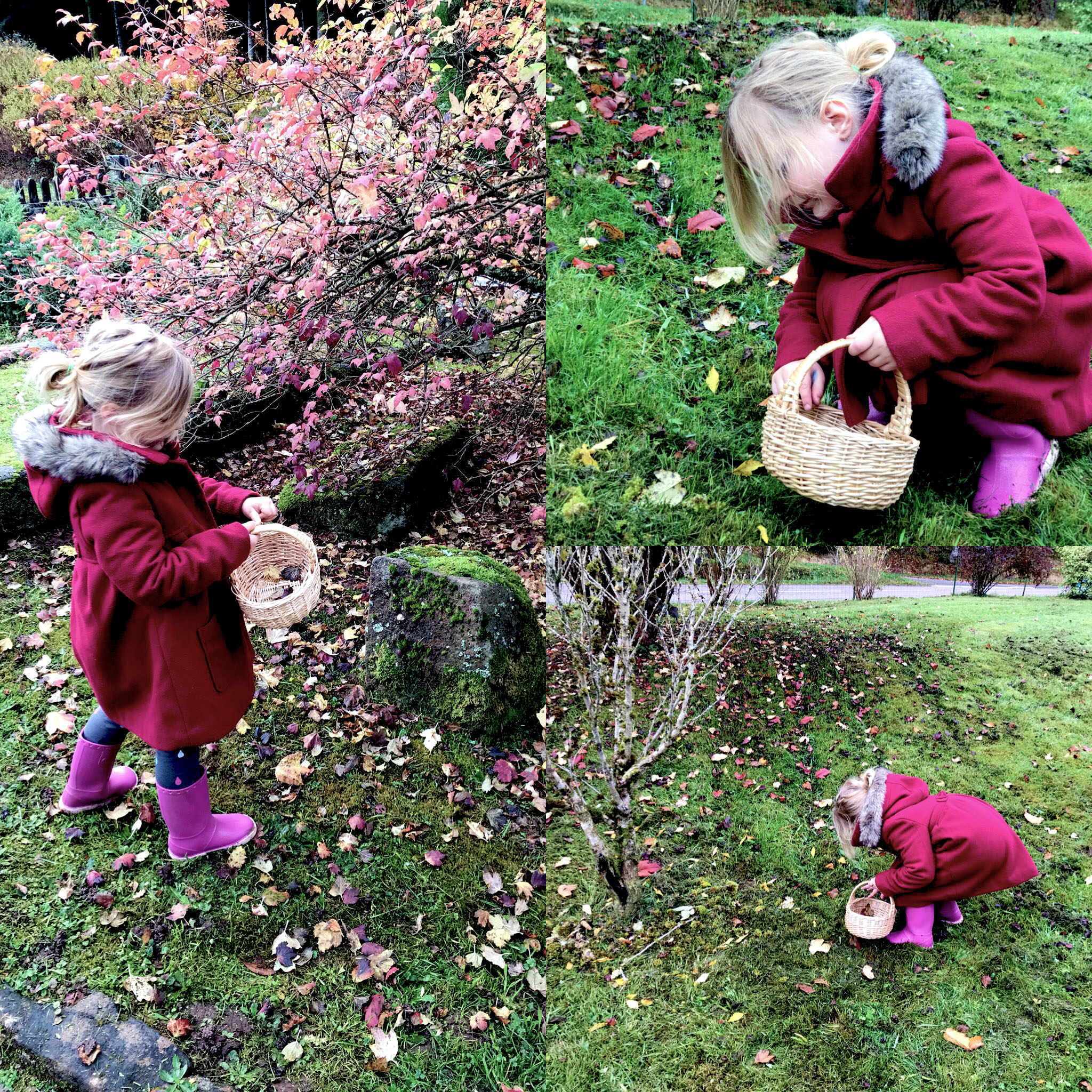 acitivité-enfant-automne-feuilles